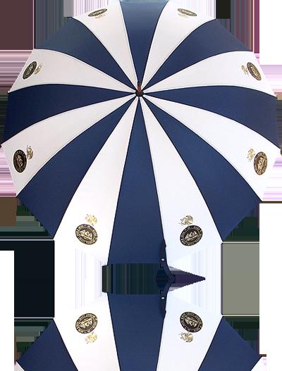 Paraguas portero 501 r 16 for Precio de sombrillas